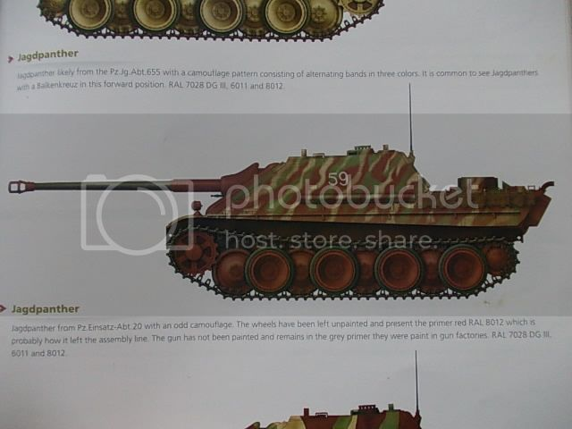 "Jagdpanther ""Late"" (terminado 22-11-14) DSCN0564_zpsb4718b26"