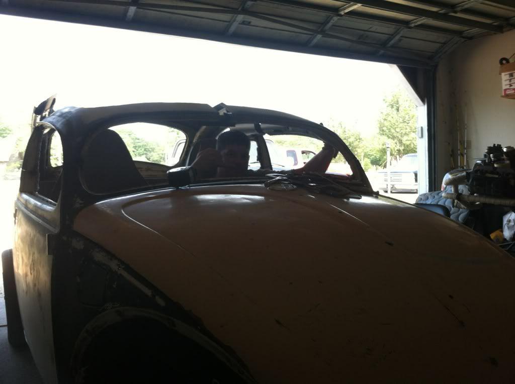 The Mutt Bug 281095df