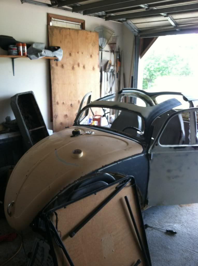 The Mutt Bug 4e94421d