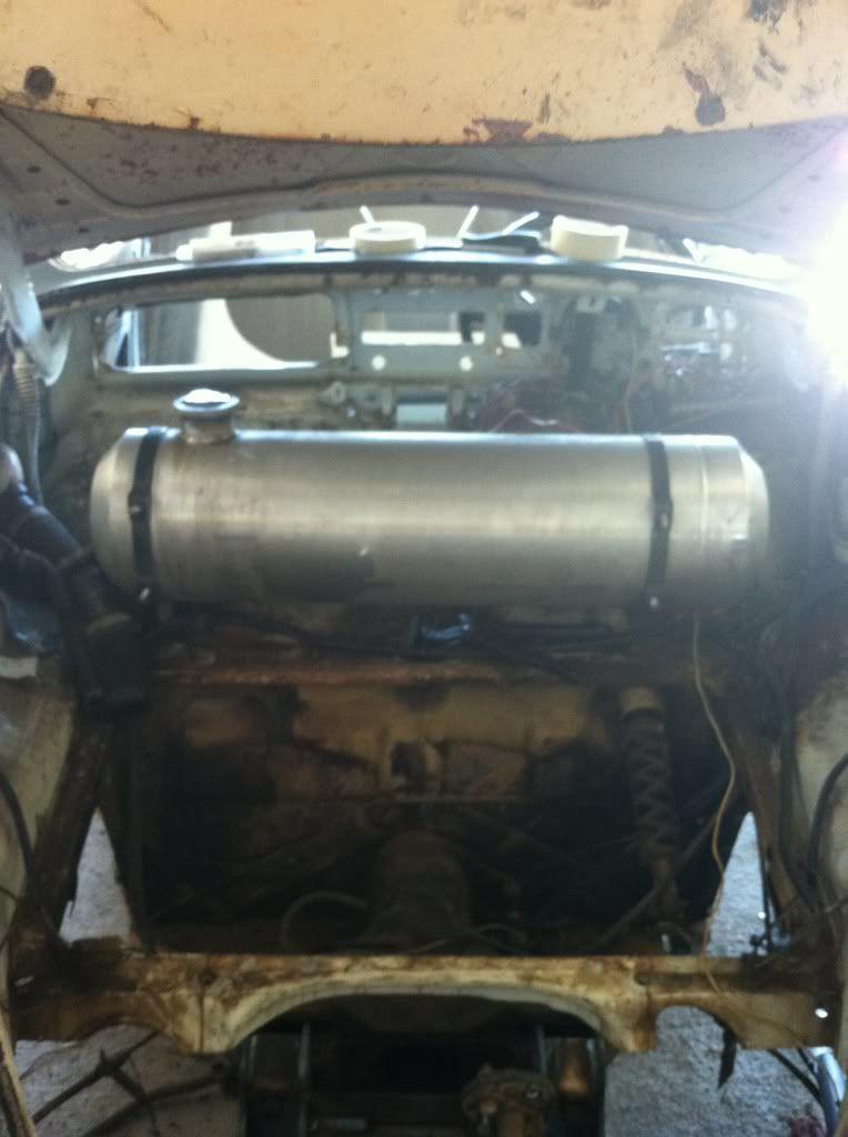 The Mutt Bug 67c04ec3