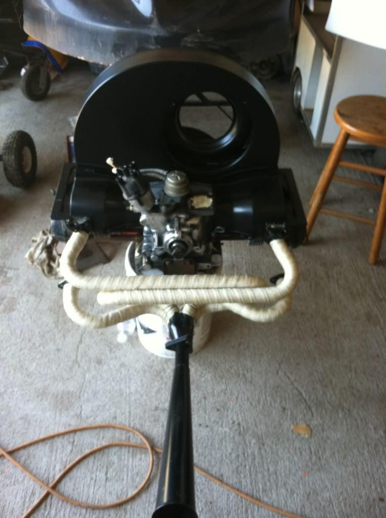The Mutt Bug Ca4f6652