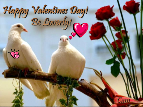 Happy-Valentines-Day. Pictures, Images and Photos