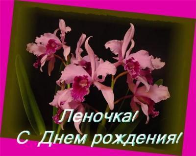 Поздравляем с Днем Рождения Елену (elena_shu) 45c7046a4560e6663da6cbbab65dd9ed