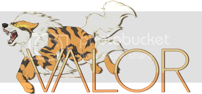 Pokemon Valor Valor