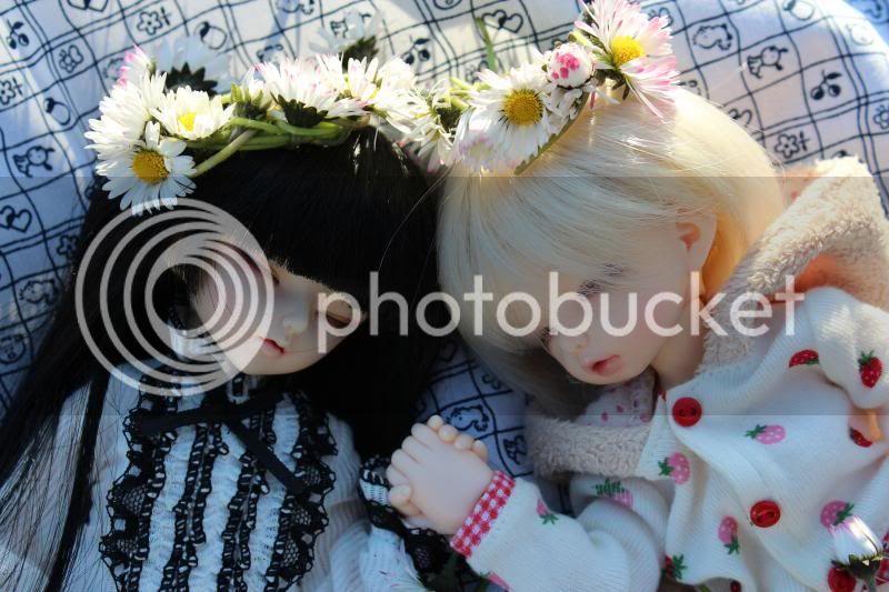 Blomsterkrans - Eliza[LTF Bisou], Nica [LTF DES], Julia [SOOM Ai] og Paksu [SOOM Pyrol] IMG_6810_zpse83b0590
