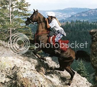 Endurance horse And riders Endurancehorse