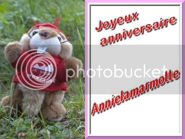 Le fil des anniversaires...(suite 1) Marmotte1
