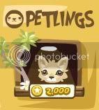 Guía para jugar Pet Society Dibujo6