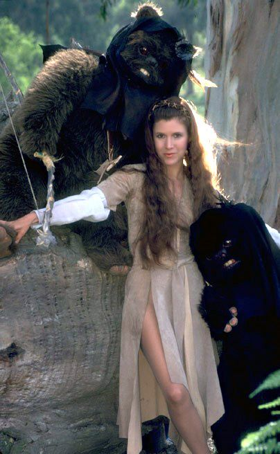 OT - There Is Something About Leia LeiaEndorDress