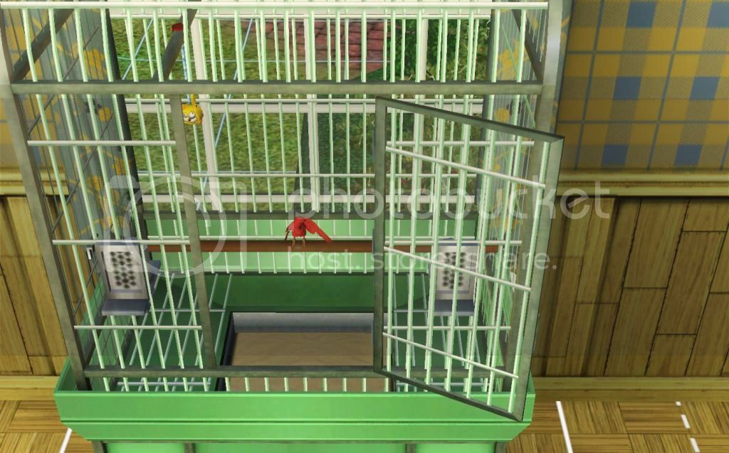 Cardinal photo Screenshot.jpg