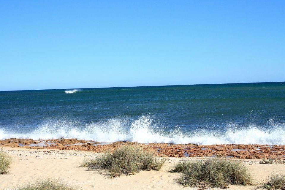 Ozzy Fishing Trip 541196_3087406145845_1284679082_32297593_1129737146_n