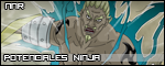 Ponteciales Ninja