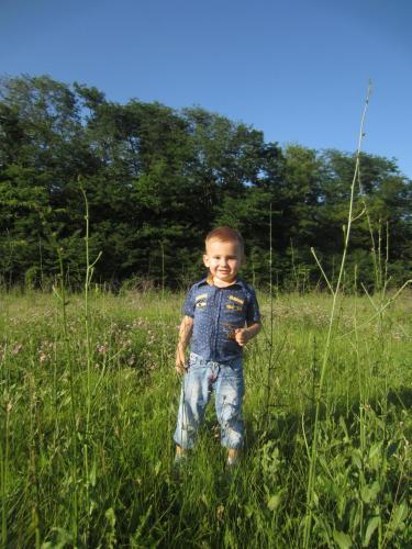 Лето-это маленькая жизнь. Фотоконкурс - Страница 2 7e089fa35ed38f434b66c4d776085c00