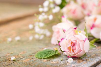Поздравляем с Днем Рождения Анну (Anna_60) 554d4b3317112d23ca76490c4297c610
