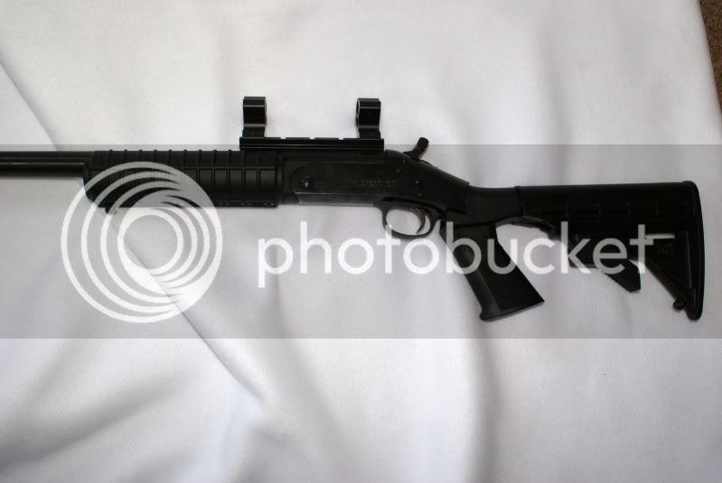 making an old one new again Gun2