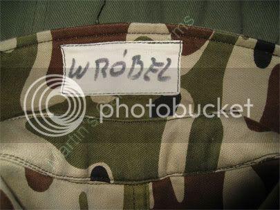 Polish trial camouflage uniform? IMG_3883