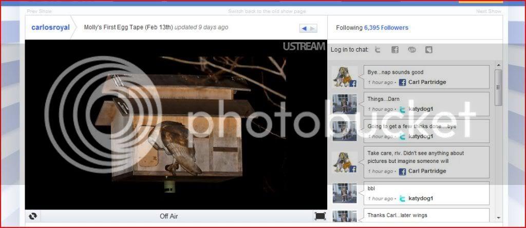 Ustream Chat Beta