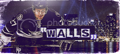 Nashville Predators. Walls
