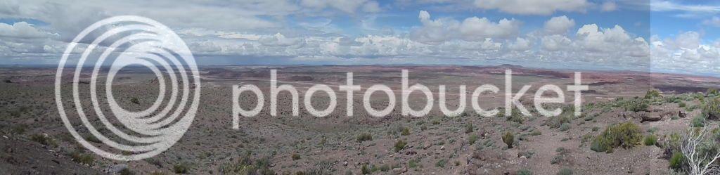 Petrified Forest National Park/ Painted Desert, AZ 11