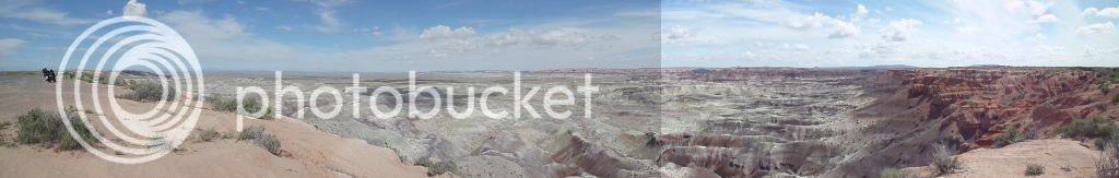 Petrified Forest National Park/ Painted Desert, AZ 14