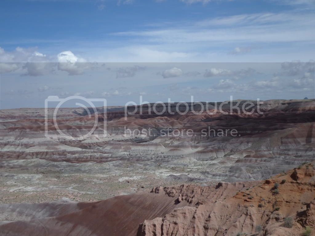 Petrified Forest National Park/ Painted Desert, AZ 16