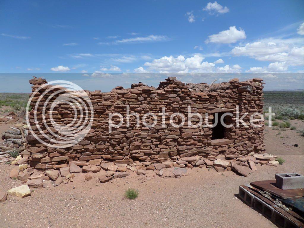 Petrified Forest National Park/ Painted Desert, AZ 18