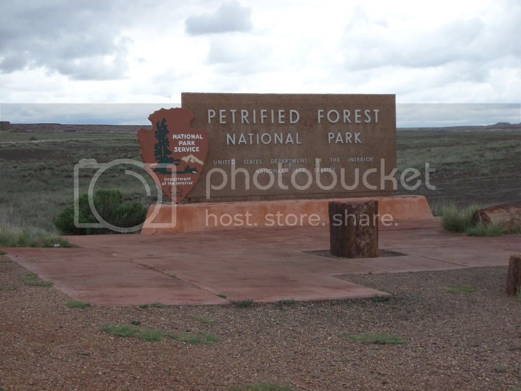 Petrified Forest National Park/ Painted Desert, AZ 5