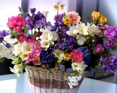 Поздравляем с Днем Рождения Юлию (Uliya) 1f2c2d2a447851339caead3bd2edd0bc