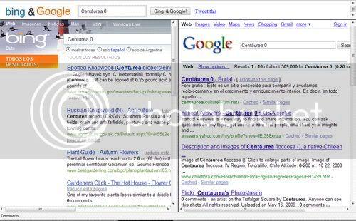 BingAndGoogle: busca exactamente - 2 buscadores C0