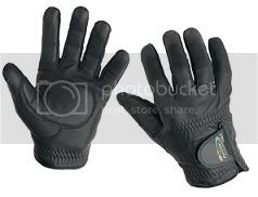Armgear Leathergloves