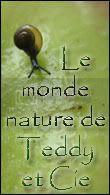 Le monde nature de Teddy et Cie ! Natteddy