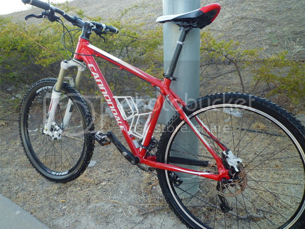 Cannondale TRAIL SL-3 2010 P1080340_resize