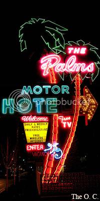 The Palms Motel 16
