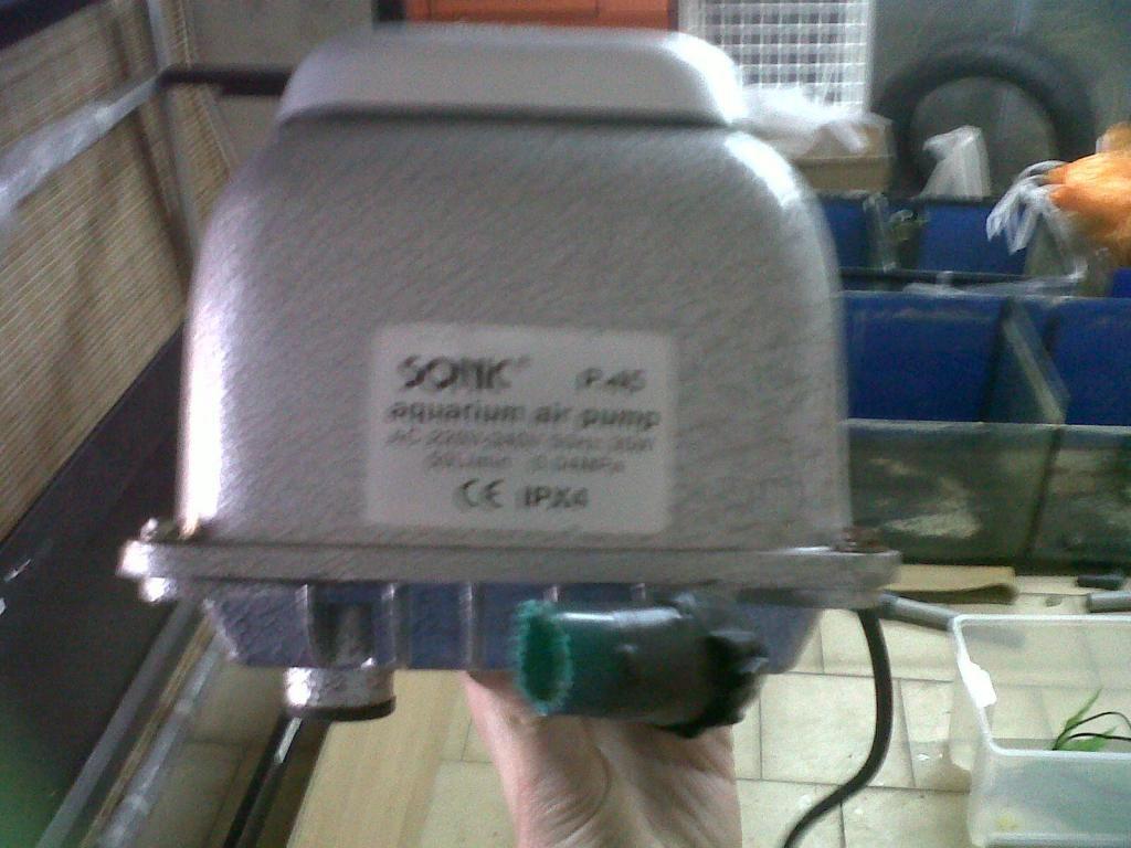 La nueva bateria de husky! Iza-20130216-01535_zps26184a3d