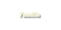 ●You Know That You Need Me● Relaciones de Stella Familia3