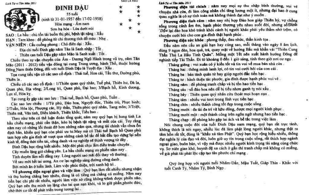 Tử Vi Tân Mão 2011 - Page 2 Dinhdau_nam