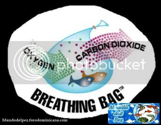 Bolsas inteligentes que respiran Oxigeno