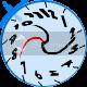Ziifee Spin Command resources. WarpedClockspin