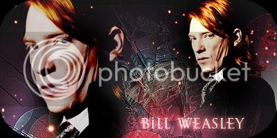 Bill Weasley Bill01
