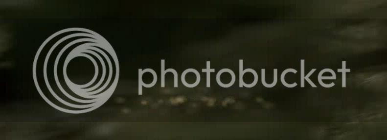 Un puente hacia Terabithia V346220