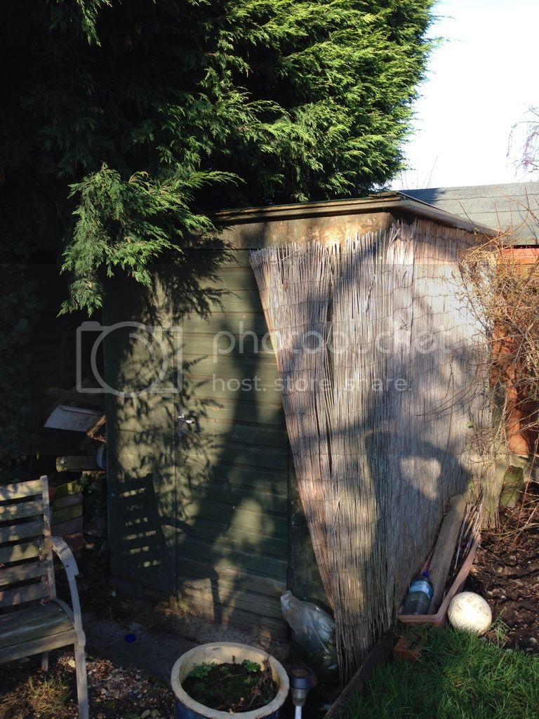 Complete Fish House for Sale! (West Midlands) CE5501C3-2DA2-4C2A-89B0-E7BFFACDD2E6-13074-0000079AA2362227
