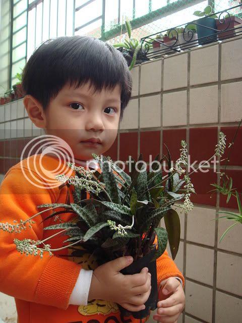 亂亂種的花園 DSC05466