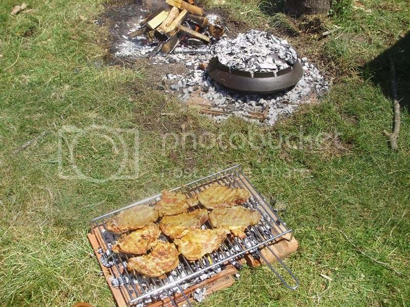 Razanj ,peka, kuhanje, rostilj...TEMA ZA GLADNE ;D - Page 2 PC080937