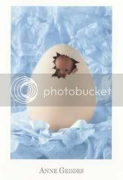 BUONA PASQUA Eggbaby2