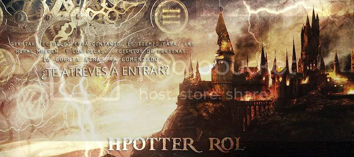 El Rol de Harry Potter
