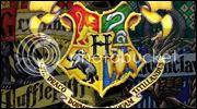 Harry Potter Rol Hogwartspuntos