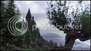 Harry Potter Rol Sauceboxeador