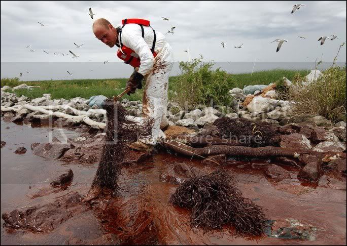 OIL SPILL in the GULF of MEXICO ....... GAIA BLEEDS BLACK!!! 100604_gulf_oil_spill_lg