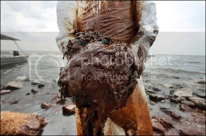 OIL SPILL in the GULF of MEXICO ....... GAIA BLEEDS BLACK!!! 100604_gulf_oil_spill_lg3