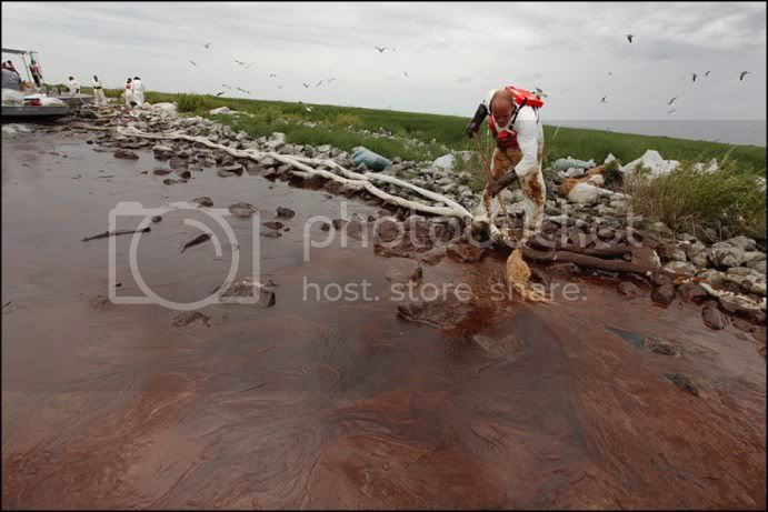 OIL SPILL in the GULF of MEXICO ....... GAIA BLEEDS BLACK!!! 100604_gulf_oil_spill_lg4